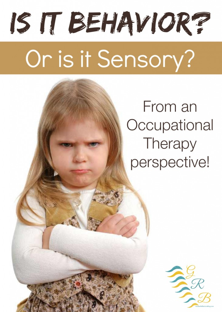 behavioral issues in preschoolers behavior problems or sensory processing issues 131