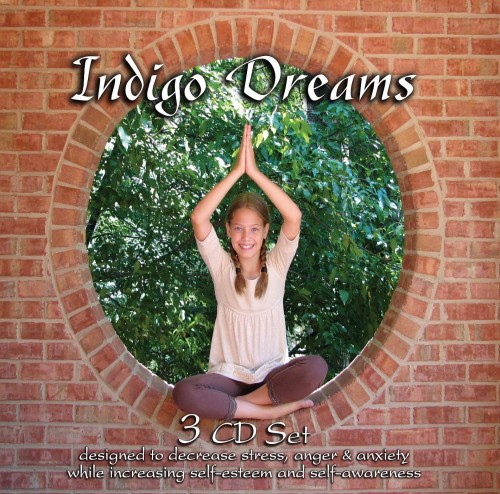Stress Dreams: Indigo Dreams (3 CD Set) (Auditory Tools)